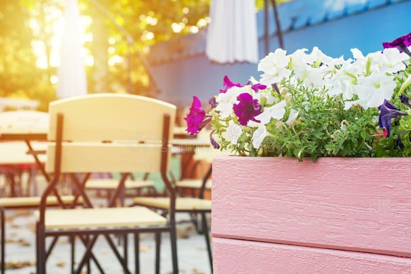 Caf? con las tablas y las sillas en calle Calle acogedora con las flores y las tablas de caf? imágenes de archivo libres de regalías