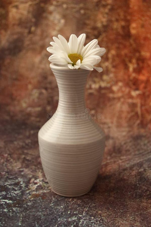 Caf? de matin press? : une tasse de caf?, de fleurs dans un vase, de fruits secs et de bonbons dans un vase, une bougie br?lante photo stock