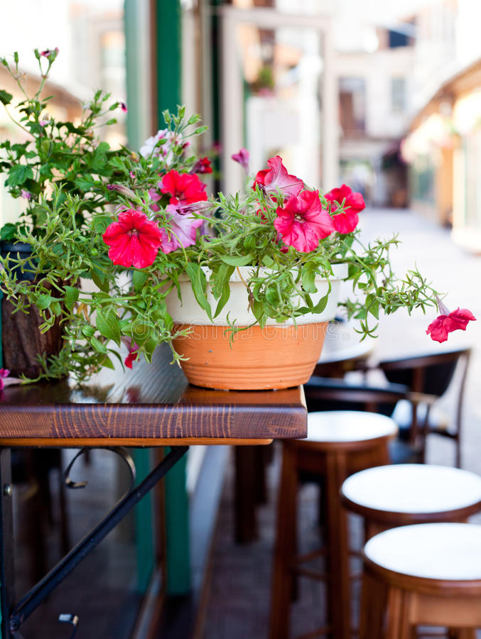 Cafe outdoors royalty free stock photo