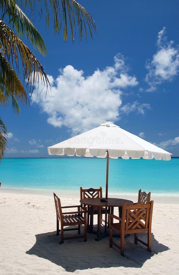 cafe plażowa zdjęcie royalty free
