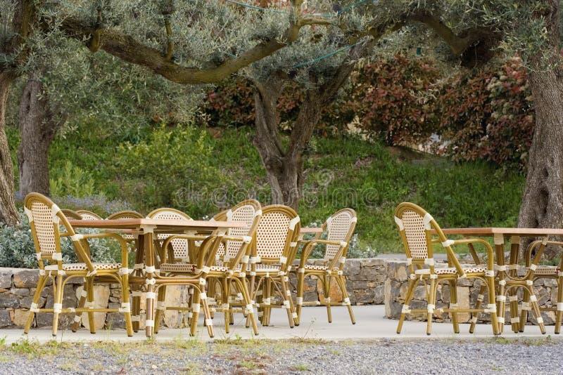 cafe stary olive chodnik drzewo zdjęcia stock