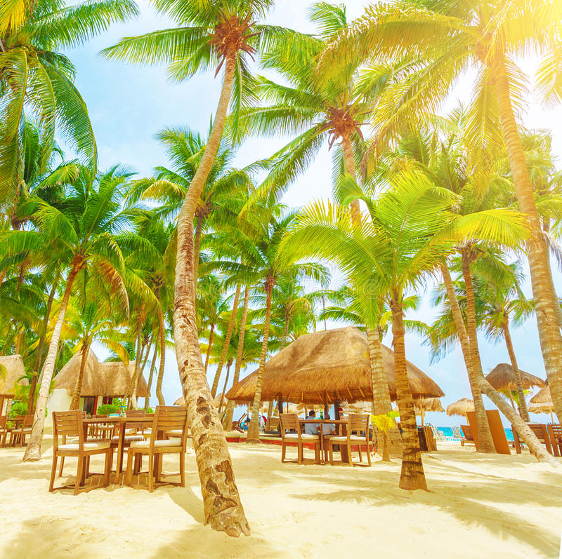 Beautiful Sunny Day At Tropical Beach Royalty Free Stock: Cafe On Tropical Beach Stock Photo. Image Of Relaxing