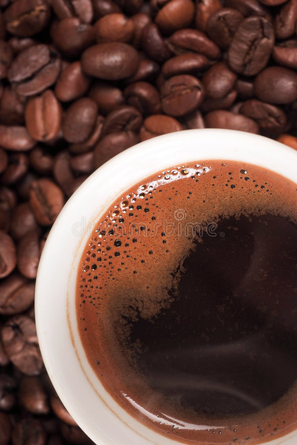 Download Caffè fotografia stock. Immagine di seme, aggiunta, mocha - 3885804