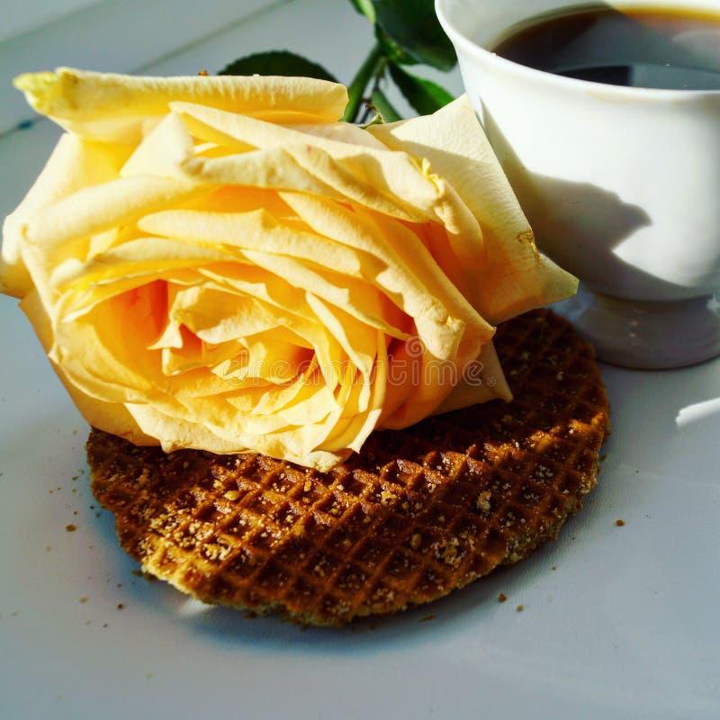 Caffè in base immagine stock