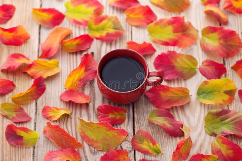 Caffè con le foglie di autunno fotografia stock