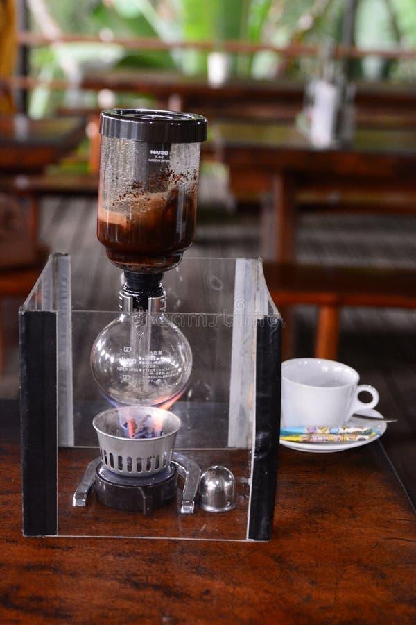 Caffè dello zibetto che fa macchina Tampaksiring Reggenza di Gianyar bali l'indonesia fotografie stock libere da diritti