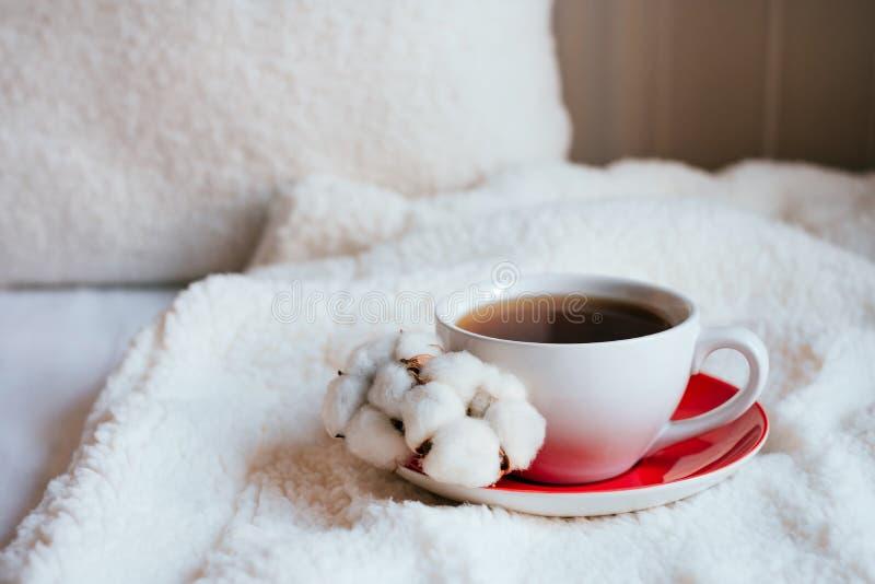 Caffè di mattina in base immagini stock