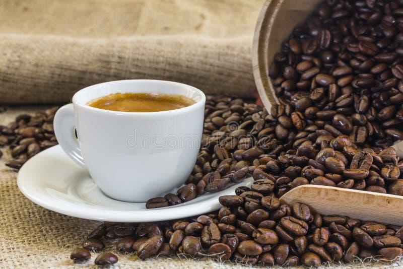 Caffè fresco del caffè espresso in tazza bianca con i chicchi di caffè arrostiti fotografie stock