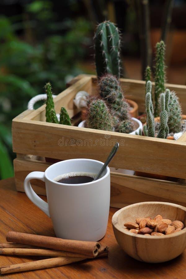 Caffè nero caldo della prima colazione in tazza bianca, cannella, dado della mandorla in ciotola di legno e pianta da vaso del ca fotografia stock libera da diritti