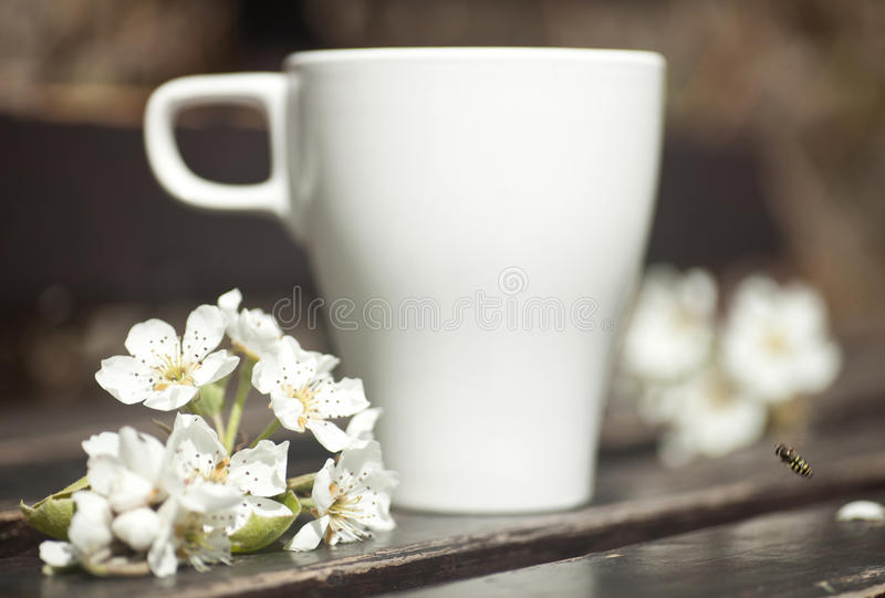 Caffè sul banco fotografie stock libere da diritti
