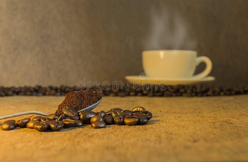 Caffè sul cucchiaio di caffè e sui chicchi di caffè fotografia stock
