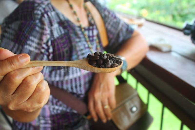 Caffè in un seme del cucchiaio fotografia stock