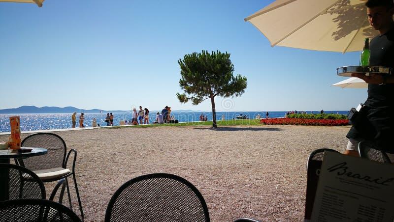 Caffe в Zadar стоковое фото rf