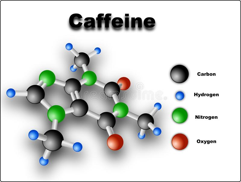 Caffeine molecule vector illustration