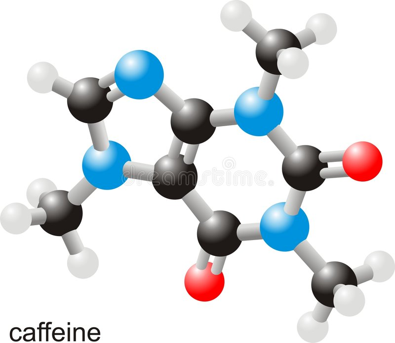 Caffeine molecule vector illustration