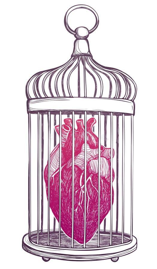 Cage à oiseaux avec le coeur anatomique illustration de vecteur