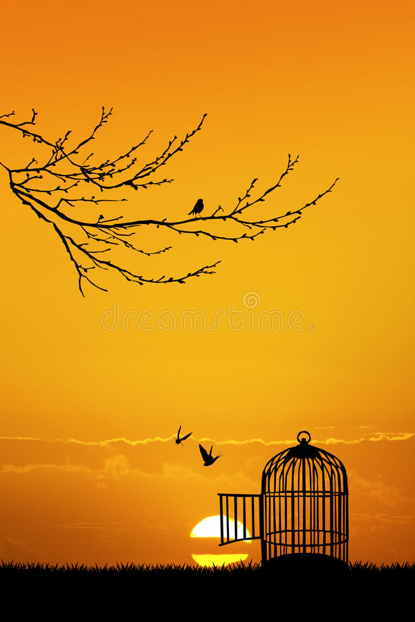 Cage for birds at sunset. Illustration of cage for birds at sunset royalty free illustration