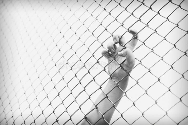 Cage contagieuse de maille de main Le prisonnier veulent la liberté photos stock