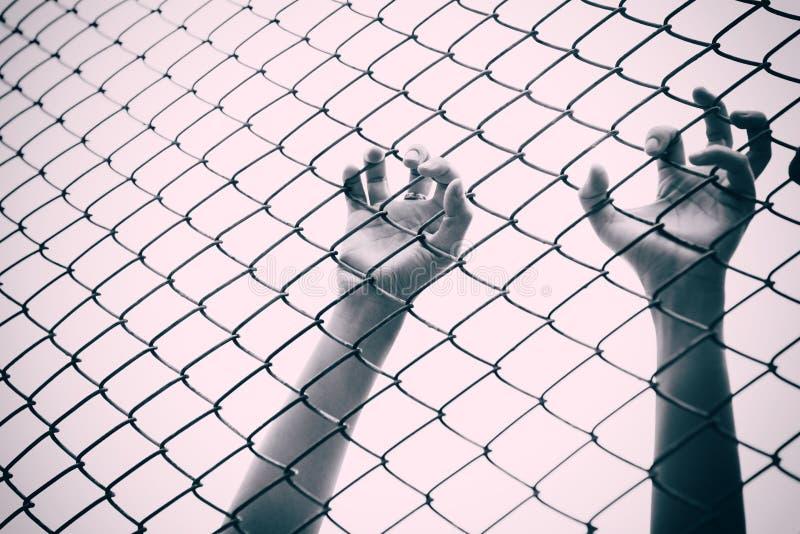 Cage contagieuse de maille de main Le prisonnier veulent la liberté image libre de droits
