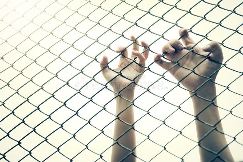 Cage contagieuse de maille de main Le prisonnier veulent la liberté photo libre de droits