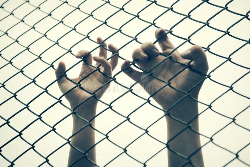 Cage contagieuse de maille de main Le prisonnier veulent la liberté photographie stock libre de droits