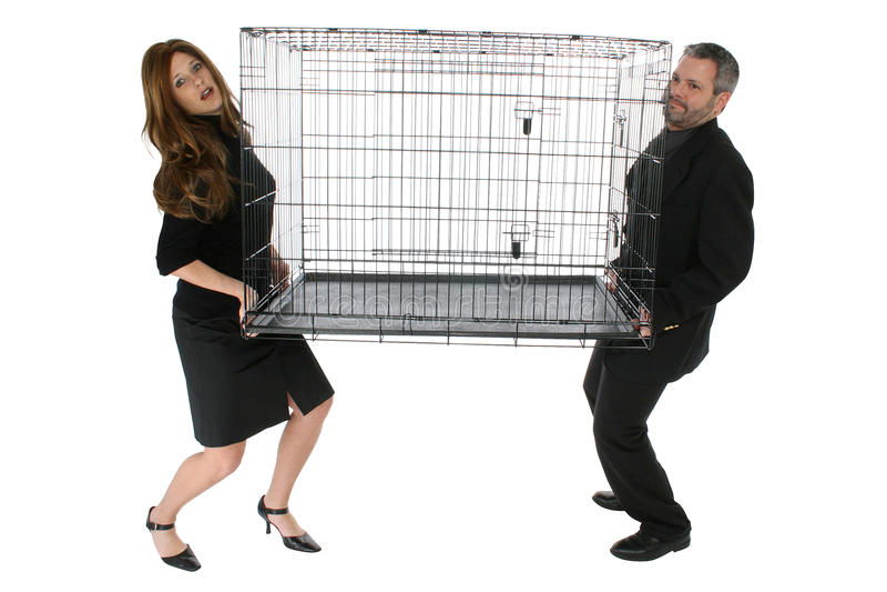 Cage de bureau photos libres de droits