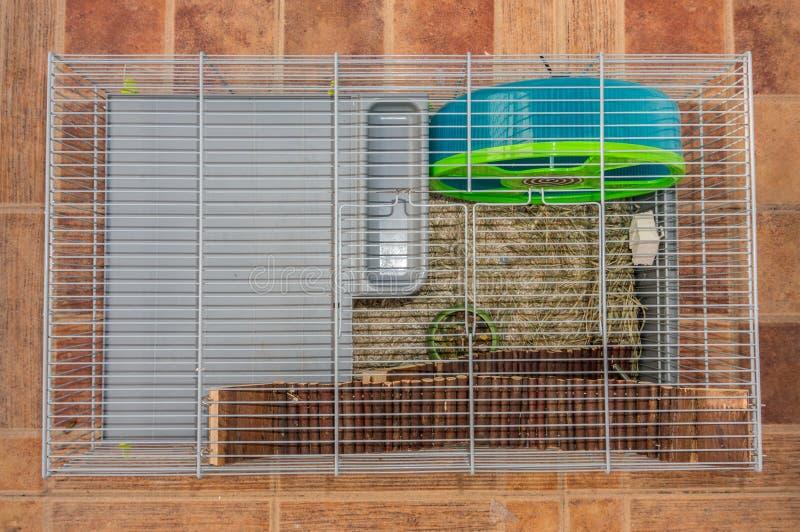Cage de hamster avec des accessoires images libres de droits