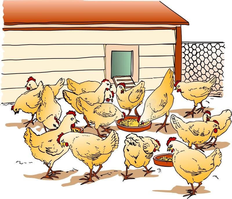 Cage de poulet illustration libre de droits