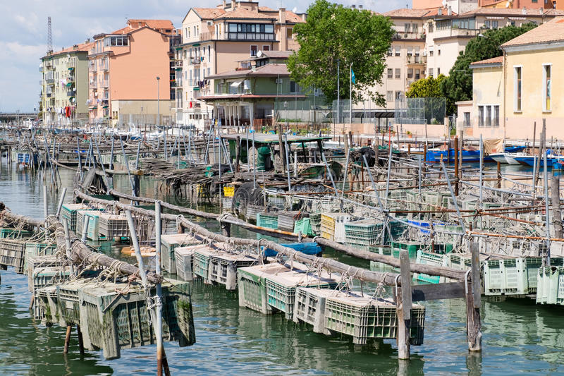 Cages for the harvesting of shellfish. Cages for shellfish fishing in Chioggia, the little Venice royalty free stock image