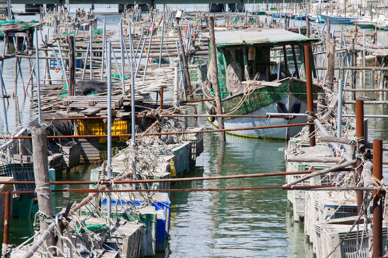 Cages for the harvesting of shellfish. Cages for shellfish fishing in Chioggia, the little Venice stock photos