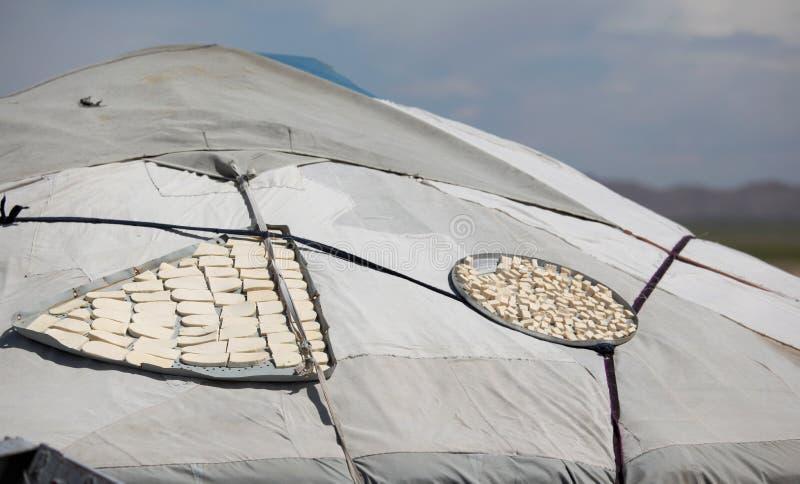 Cagliata del latte in polvere di Aaruul fotografie stock libere da diritti