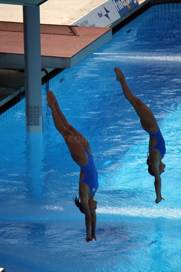 Cagnotto Dallapè dive 13 fina world champion stock images