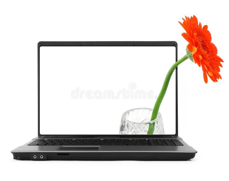 Cahier avec une fleur photos libres de droits