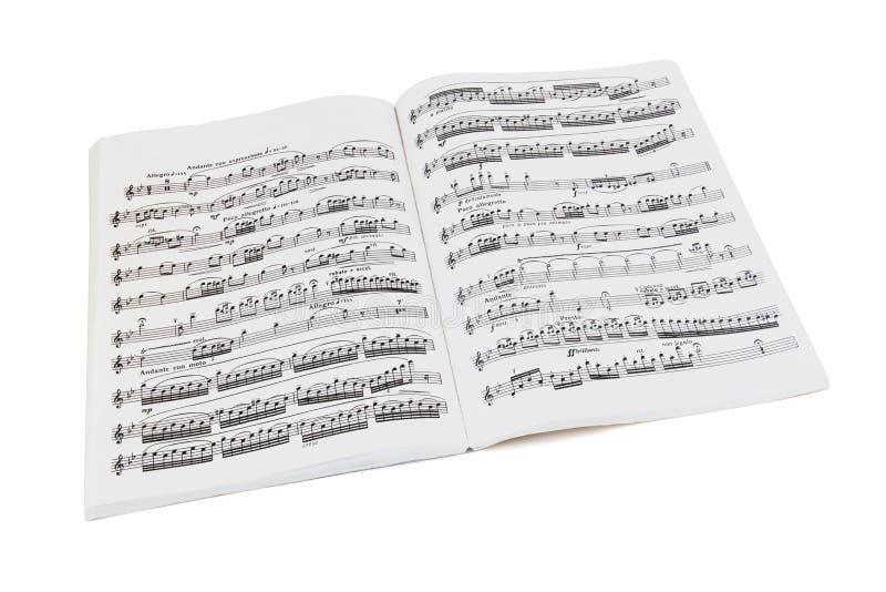 Cahier de musique de feuille images libres de droits
