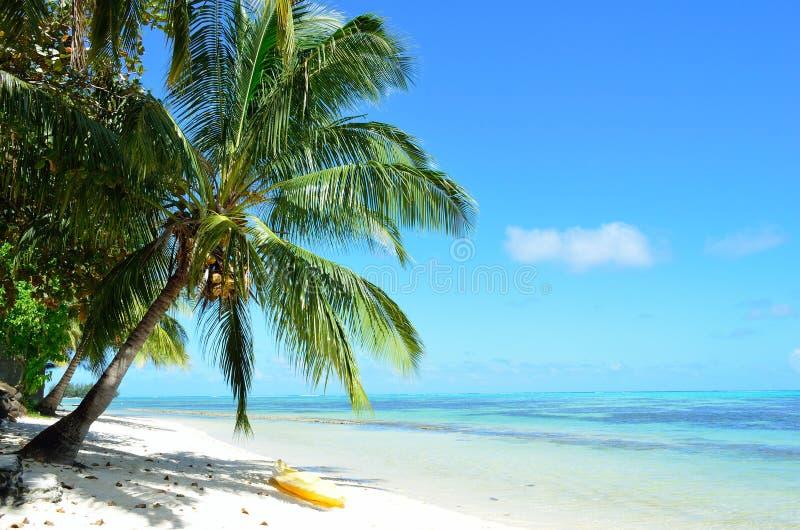 Caiaque em uma praia branca tropical imagens de stock royalty free