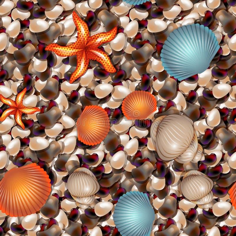 Caillou de mer avec des coquilles et étoile de mer de différentes formes Configuration sans joint illustration de vecteur