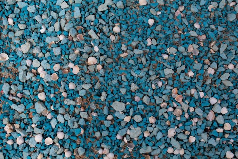 Cailloux de mer de couleur bleue avec des coquilles de couleur et de taille différentes photographie stock libre de droits