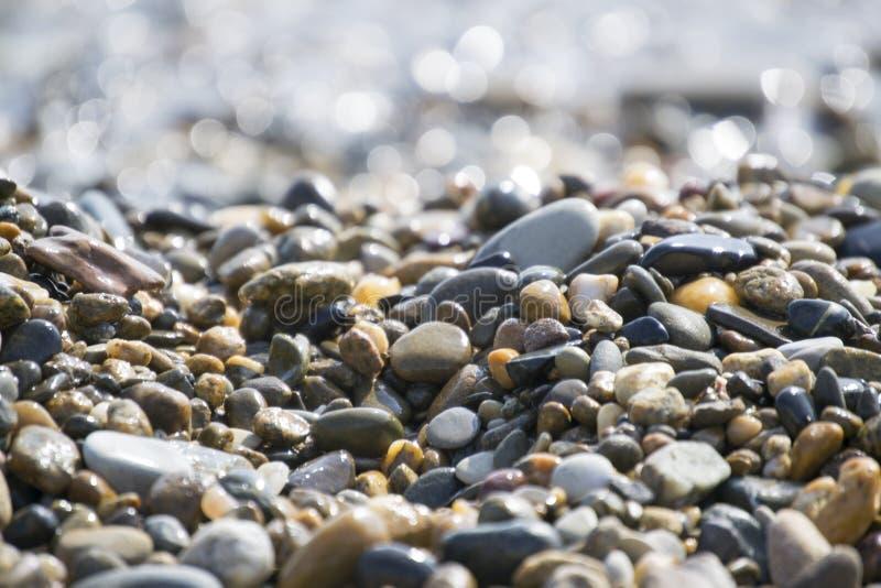 Cailloux humides de mer photos libres de droits