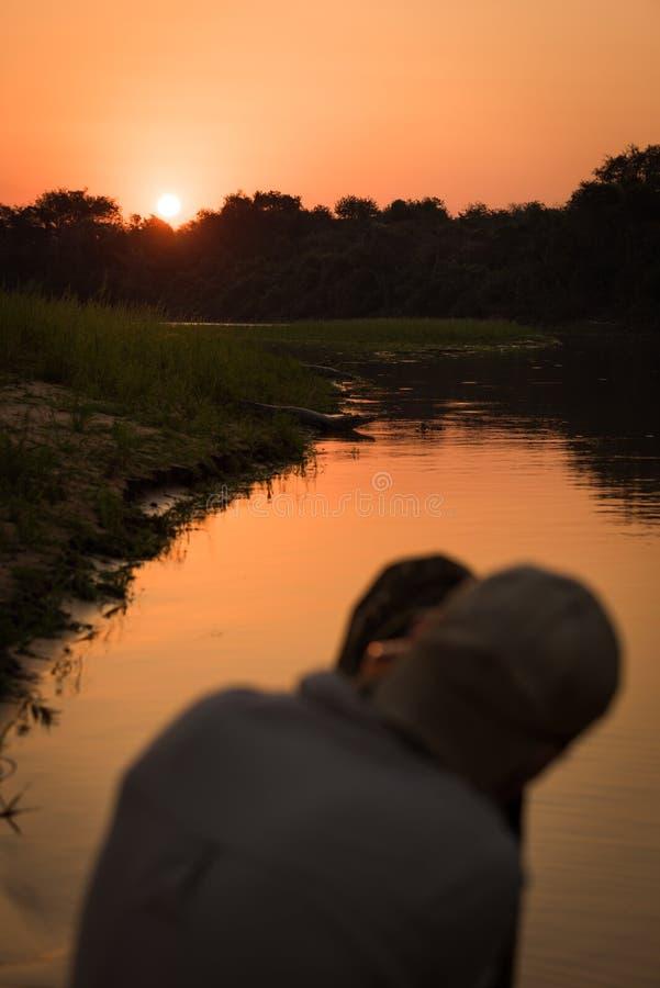 Caimão do yacare do tiro do fotógrafo ao longo do banco de rio imagens de stock royalty free