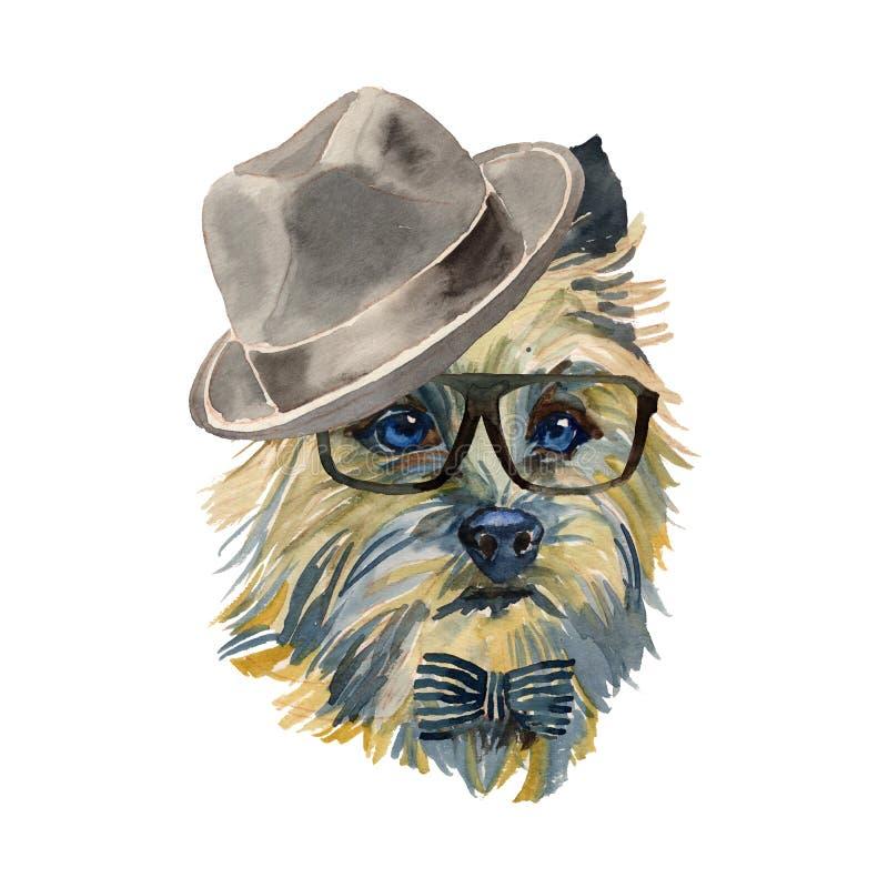 Cairn Terrier - portra isolato realistico del cane dei pantaloni a vita bassa dell'acquerello royalty illustrazione gratis