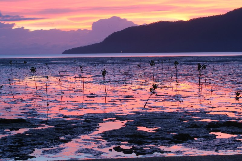 Download Cairns Sunrise Royalty Free Stock Image - Image: 8772016