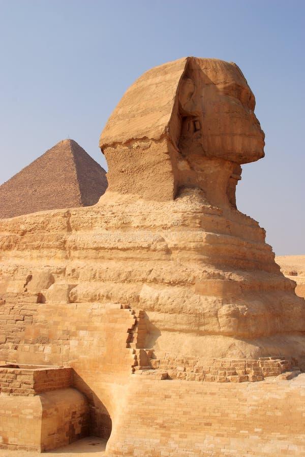 cairo egypt giza sphinx royaltyfria bilder