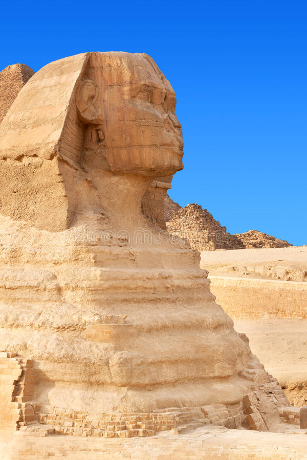cairo egypt giza sphinx royaltyfri bild