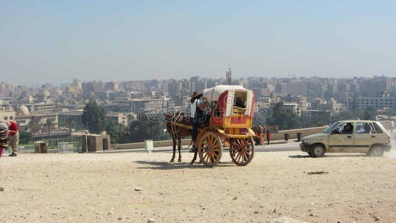 Tourist going up to a carriage, Cairo stock photography