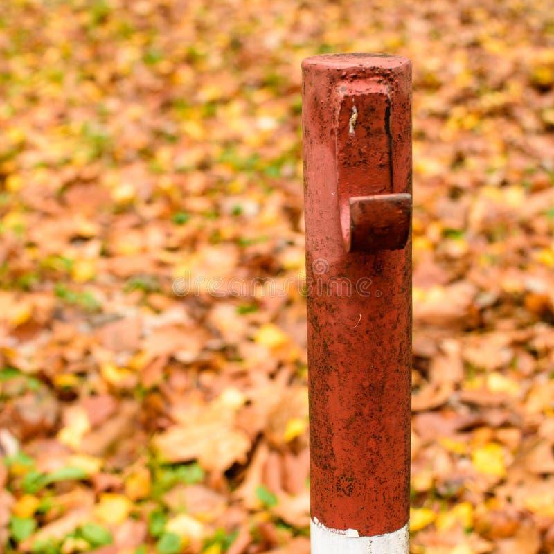 Cais colorido vermelho com backgrond da folha do outono fotografia de stock royalty free