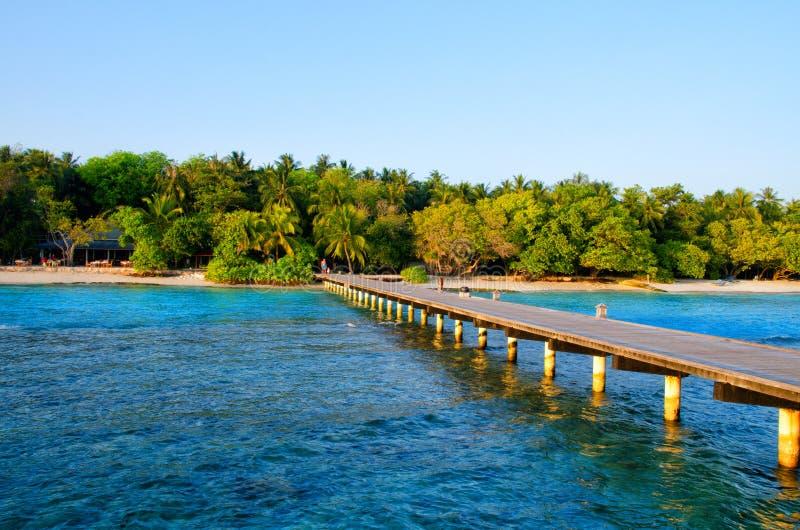 Cais de madeira, ponte ? ilha com jardim tropical Ilha de Maldivas, Oceano ?ndico Fundo das f?rias de ver?o do curso imagem de stock royalty free