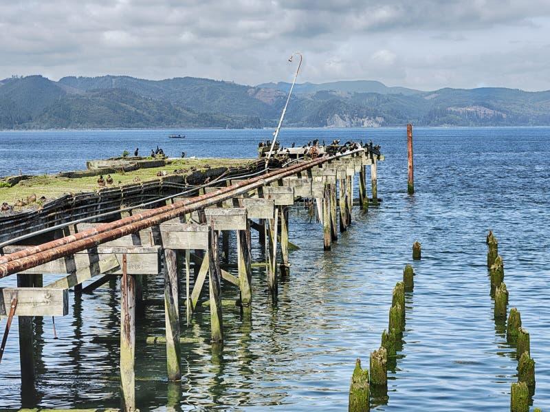 Cais De Pesca No Rio Columbia fotos de stock