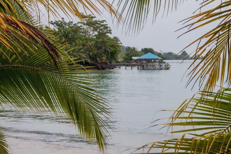 Cais na ilha de Isla Colon, parte do arquipélago de Toro do del de Bocas, Pana fotos de stock