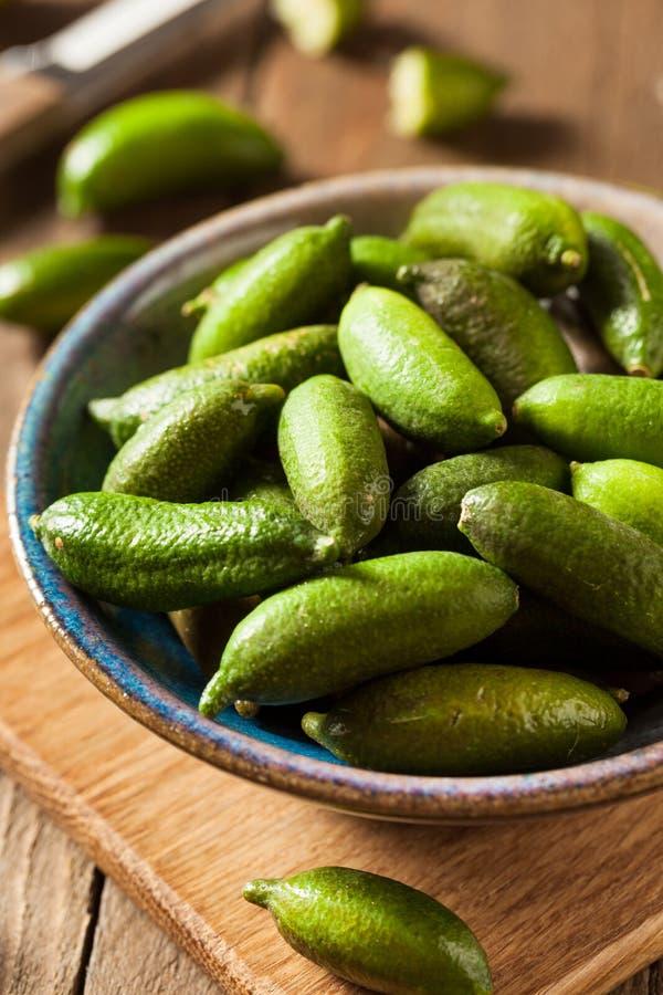 Cais orgânicos crus do dedo verde foto de stock
