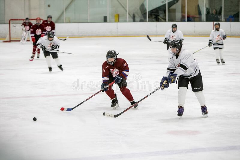20161218.090831.caitlin_fall_playoff_hockey_game.0013 Free Public Domain Cc0 Image